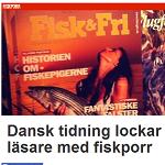Nyheter24 2013-01-24 Dansk tidning lockar läsare med fiskporr