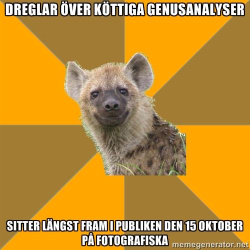 Hyenan